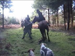 Broise begins assault on Simon Wild
