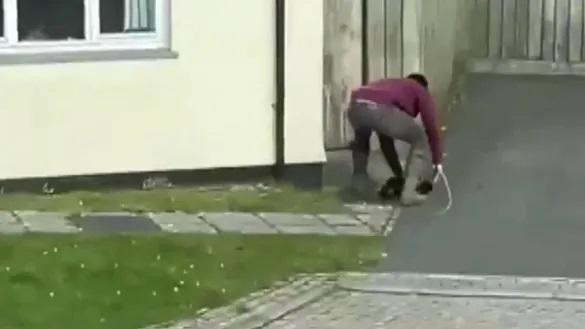 Scum: Western huntsman tries to hide the cat's body.