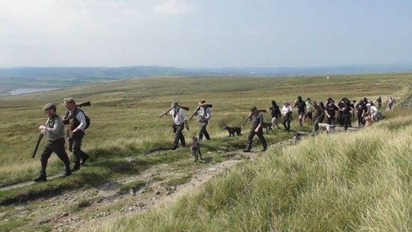 Grumbling grouse shooters in full retreat.