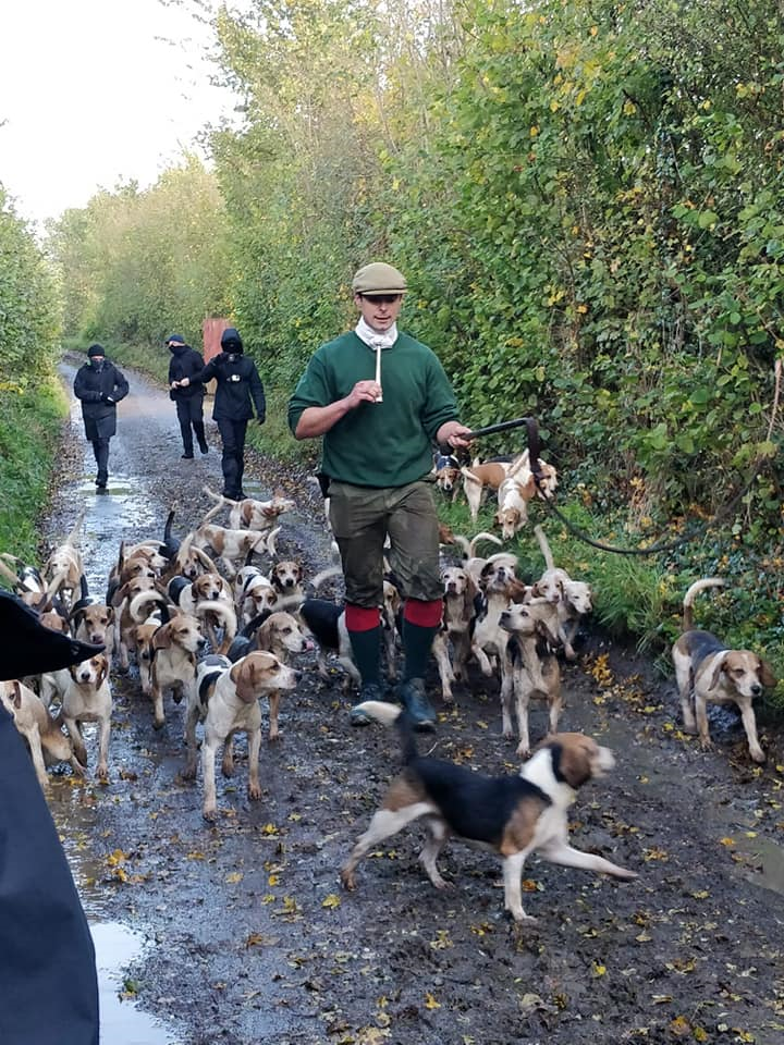 Hare hunters sent packing by sabs.