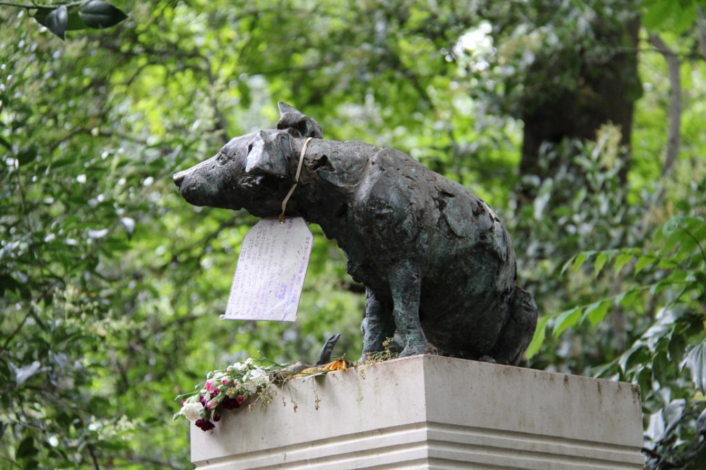 the brown dog statue