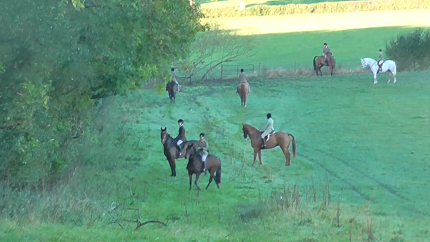 Cub hunting: riders surround a wood.